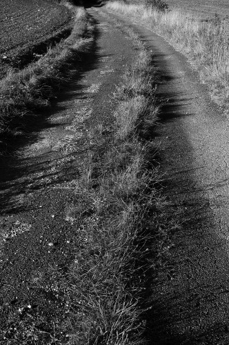 C'est une route abandonnée...