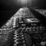 …Est lumineux labyrinthe.